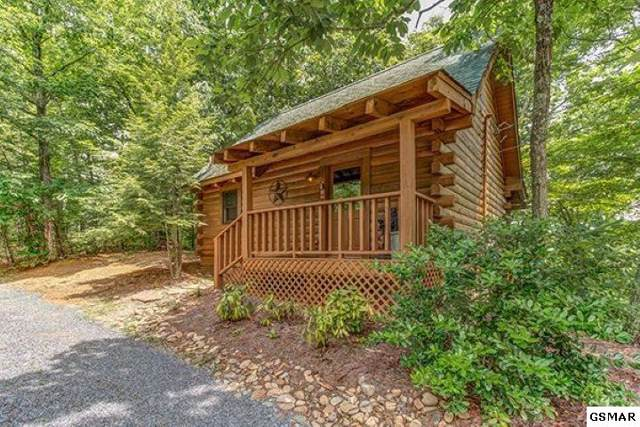2919 Valley Springs Way, Sevierville, TN 37862 (#225979) :: Four Seasons Realty, Inc