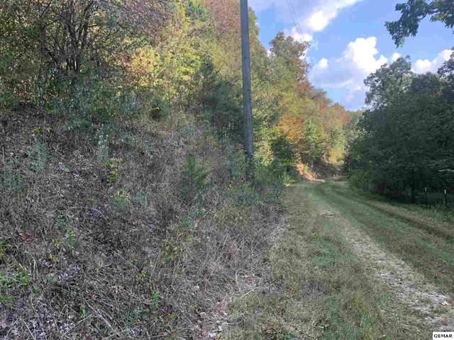 602 Cedar Top Dr, Sevierville, TN 37876 (#225988) :: Four Seasons Realty, Inc