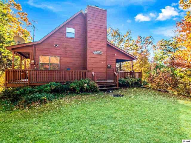 3456 Bear Mountain Lane, Sevierville, TN 37876 (#226025) :: Colonial Real Estate