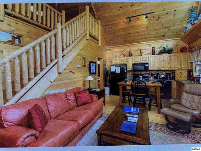 2016 Beach Front Dr, Sevierville, TN 37876 (#226037) :: Colonial Real Estate