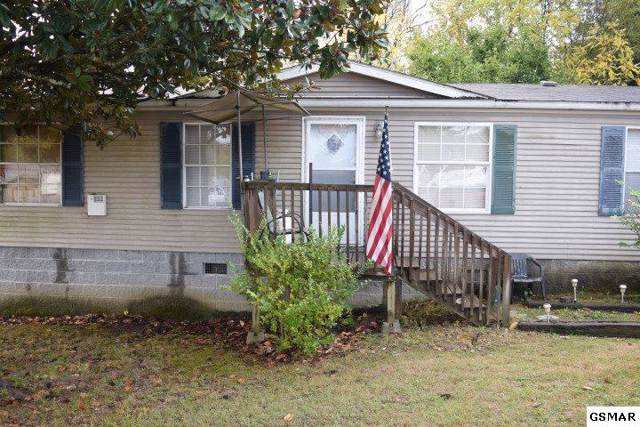 2265 Douglas Dam Rd, Sevierville, TN 37876 (#226058) :: Colonial Real Estate