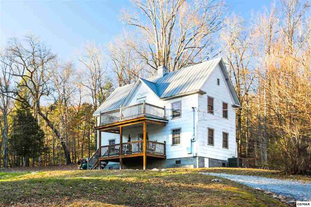 150 Caney Creek Rd, Cosby, TN 37722 (#226074) :: SMOKY's Real Estate LLC