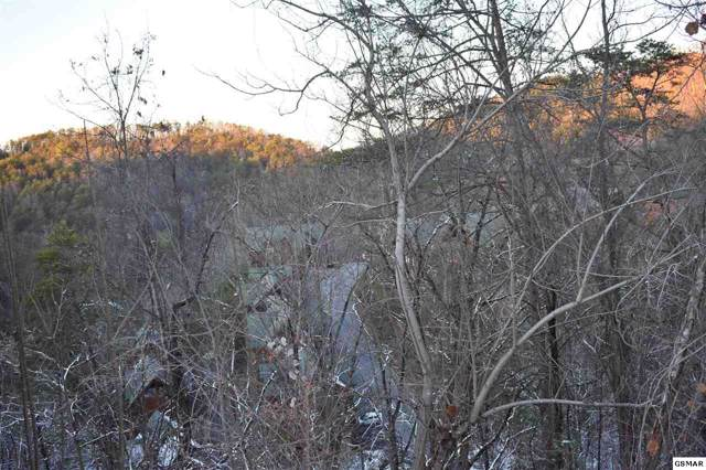 Black Bear Cub Way Lot 184, Sevierville, TN 37876 (#226103) :: The Terrell Team