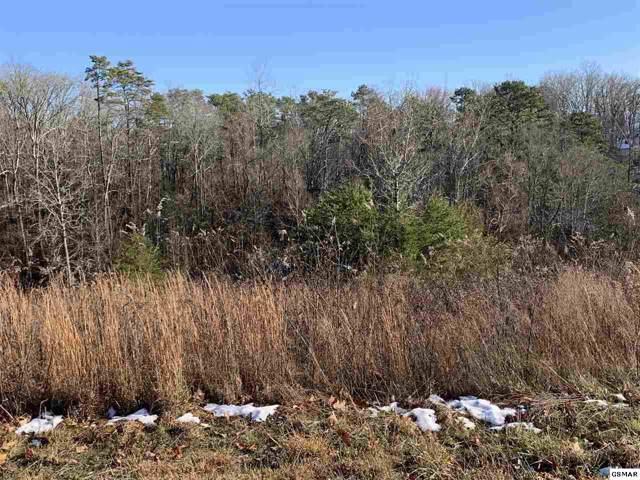 Lot 21 Cypress Drive, Dandridge, TN 37725 (#226125) :: Four Seasons Realty, Inc