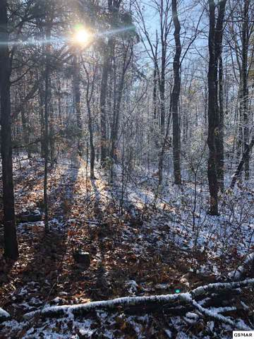 Lot 38 Priscilla Heights Lane, Sevierville, TN 37862 (#226133) :: SMOKY's Real Estate LLC