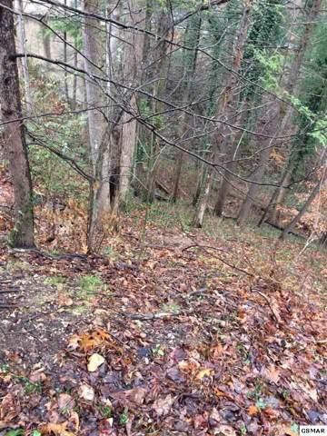 000 Turkey Nest Rd, Gatlinburg, TN 37738 (#226135) :: Four Seasons Realty, Inc