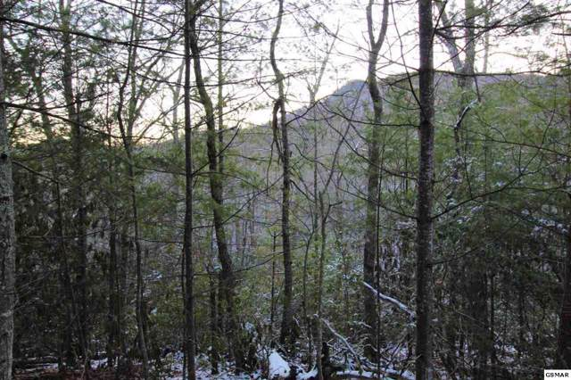 Lot 18R Little Round Top Ln, Sevierville, TN 37862 (#226141) :: Colonial Real Estate