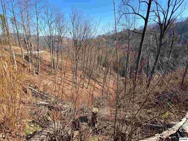 Lot Lot 507 Pinecrest Drive, Gatlinburg, TN 37738 (#226181) :: Four Seasons Realty, Inc