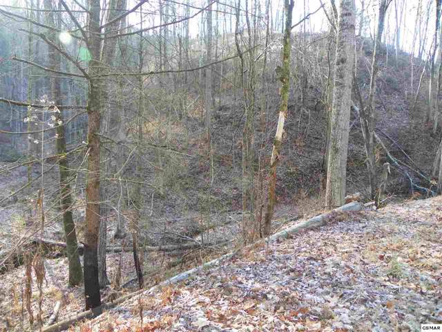 2.59 Acre Tract Lones Branch Lane Timber Ridge Wa, Sevierville, TN 37876 (#226198) :: Colonial Real Estate