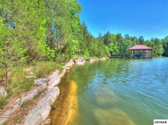 Lot 28 E Shore Dr, Rockwood, TN 37854 (#226239) :: The Terrell Team