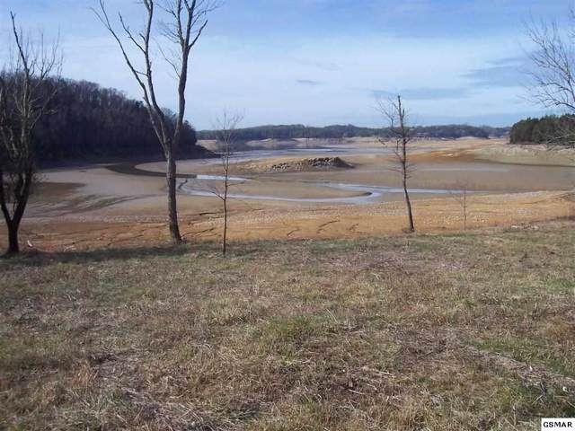 Penelope Lane Lot 14, Sevierville, TN 37876 (#226306) :: The Terrell Team