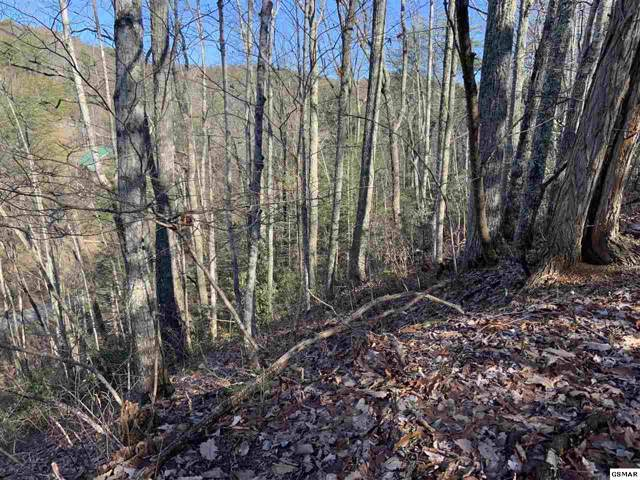 Lot 503 Overlook Ct, Sevierville, TN 37876 (#226336) :: Colonial Real Estate