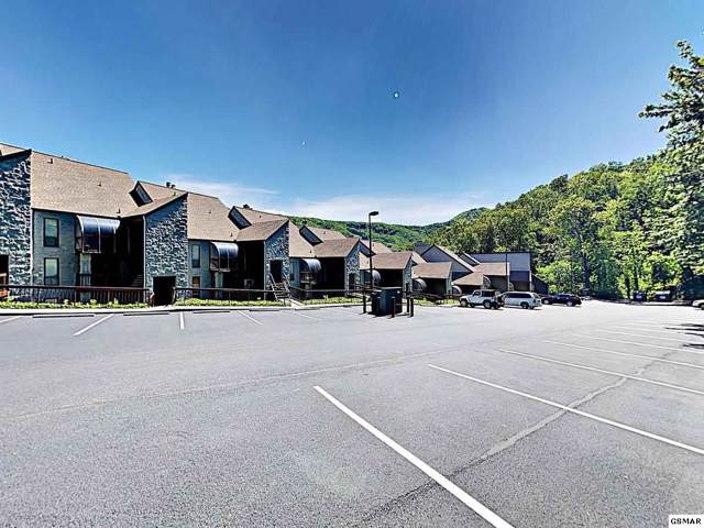 1155 Upper Alpine Way Unit 209, Gatlinburg, TN 37738 (#226339) :: The Terrell Team