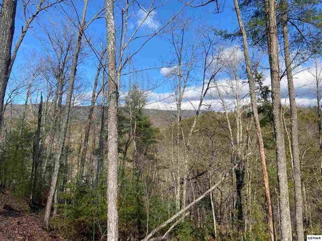 lot 108 Smoky Vista Way, Sevierville, TN 37862 (#226364) :: Colonial Real Estate
