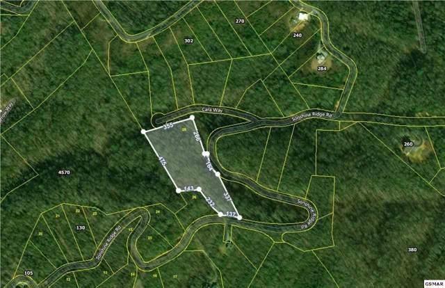 Sonshine Ridge Rd. Lot 28, Cosby, TN 37722 (#226368) :: Colonial Real Estate