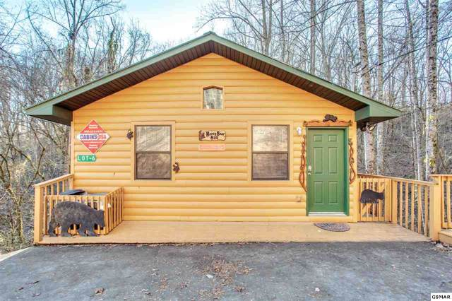 2036 Ridge Rd Suite 6, Pigeon Forge, TN 37863 (#226369) :: Colonial Real Estate
