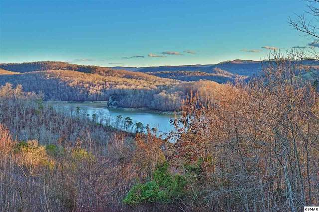 Lot 723 Broadmoore Ln, New Tazewell, TN 37825 (#226381) :: Colonial Real Estate