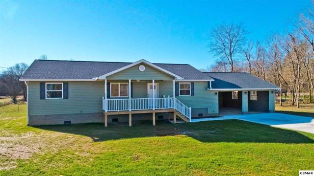 807 Caney Hollow Rd, Newport, TN 37821 (#226393) :: Colonial Real Estate