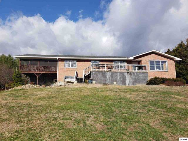 1426 Chapman Hwy, Sevierville, TN 37876 (#226417) :: Colonial Real Estate