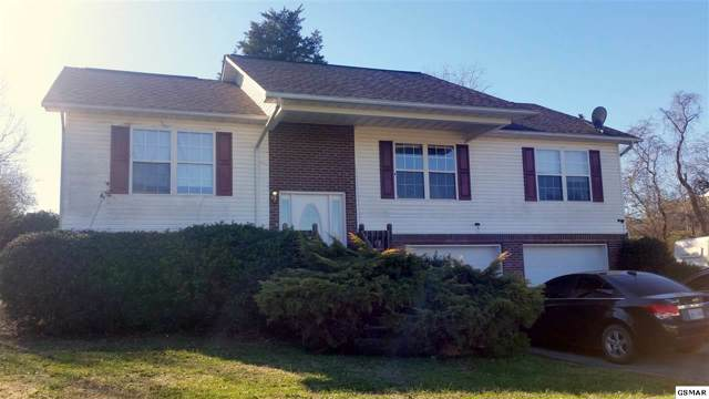 1546 Jasmine Trl, Sevierville, TN 37862 (#226418) :: Colonial Real Estate