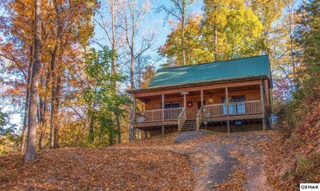 1433 Indian Court Little Bear Cab, Sevierville, TN 37976 (#226419) :: Colonial Real Estate