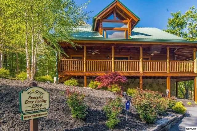 2959 Raven Fork Cir Peaceful Easy F, Sevierville, TN 37876 (#226420) :: Four Seasons Realty, Inc