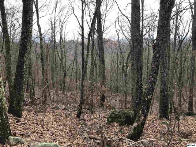 Hideaway Way, Sevierville, TN 37876 (#226469) :: Colonial Real Estate