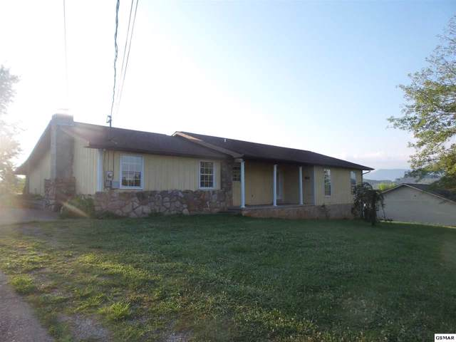 116 Golden Rod Dr, Seymour, TN 37865 (#226495) :: Colonial Real Estate
