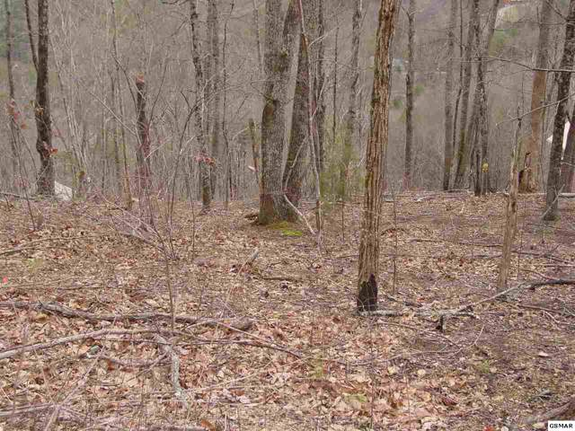 LOT 18 Lonesome Pine Way, Sevierville, TN 37862 (#226498) :: The Terrell Team