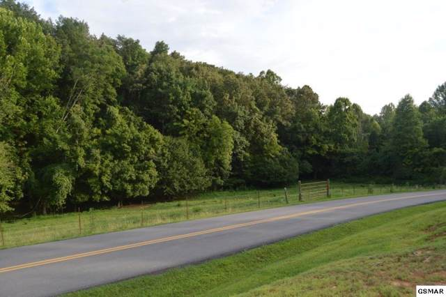 Stanton Rd, Seymour, TN 37865 (#226499) :: Colonial Real Estate