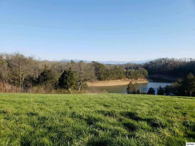 Hwy 139, Dandridge, TN 37725 (#226503) :: Four Seasons Realty, Inc