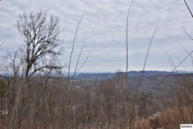 712 Bear Walk Way, Gatlinburg, TN 37738 (#226523) :: Jason White Team | Century 21 Four Seasons