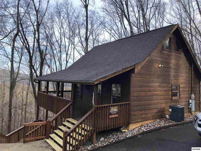 4088 Ole Smoky Way Beary Blessed, Sevierville, TN 37896 (#226526) :: The Terrell Team