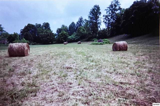 Lots 10-14 Mattox Cemetery Rd Lots 10, 11, 12, Sevierville, TN 37862 (#226541) :: Jason White Team | Century 21 Four Seasons