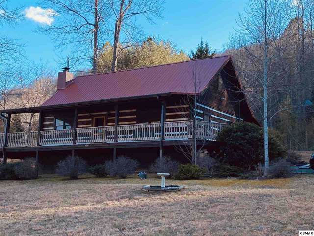 4065 Hickory Hollow Way, Sevierville, TN 37862 (#226542) :: Colonial Real Estate