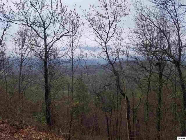 Lot 29 Laurel Top Way, Gatlinburg, TN 37738 (#226580) :: Four Seasons Realty, Inc
