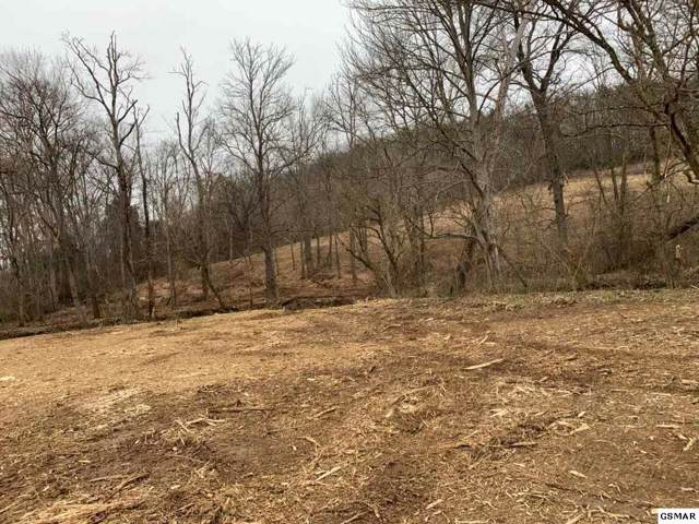 Lot 13/14 Fred Sharp Road, White Pine, TN 37890 (#226637) :: Four Seasons Realty, Inc