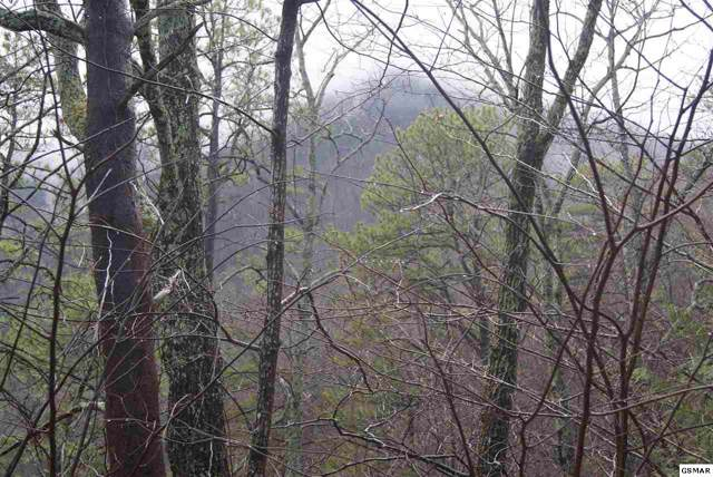 Lots 6 & 16 Overholt Trail, Sevierville, TN 37862 (#226675) :: The Terrell Team