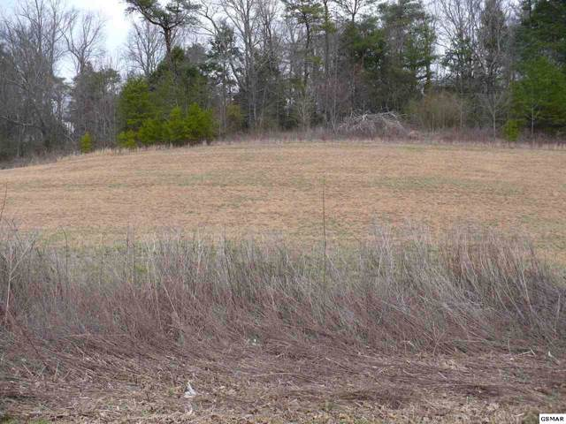 Lot #70 Clear Valley Drive, Sevierville, TN 37862 (#226751) :: Colonial Real Estate