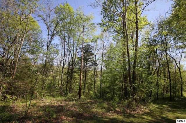 Sandy Pointe Lane, Sevierville, TN 37876 (#226769) :: Four Seasons Realty, Inc