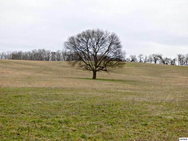 Lot 7 Valley Home Rd, Dandridge, TN 37725 (#226776) :: Four Seasons Realty, Inc