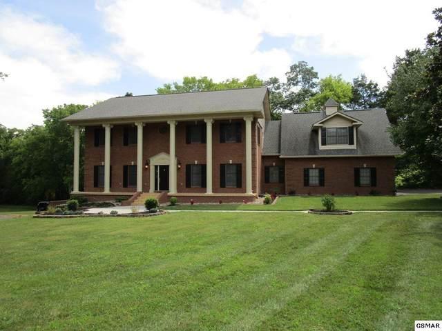 228 Evergreen Drive, Sevierville, TN 37862 (#226803) :: Jason White Team | Century 21 Four Seasons