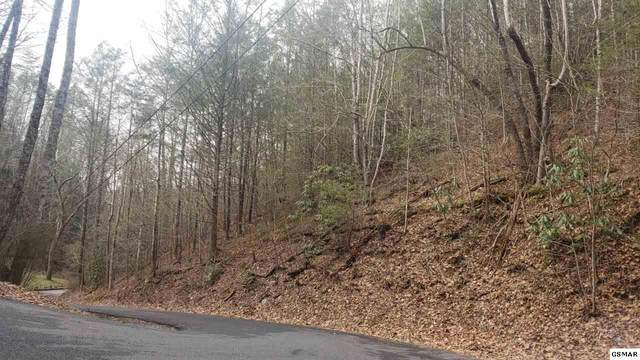 Lot Lot 10 Black Gum Gap Cobbly Nob- Che, Sevierville, TN  (#226810) :: Four Seasons Realty, Inc