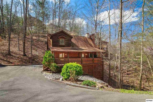 "694 Eagles Boulevard Way Ofc ""Bear It All"", Pigeon Forge, TN 37863 (#226853) :: Jason White Team 