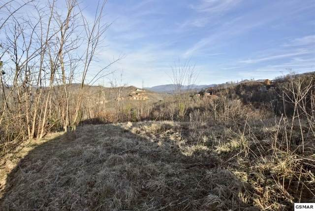 429 Red Hawk Way, Gatlinburg, TN 37738 (#226860) :: Four Seasons Realty, Inc