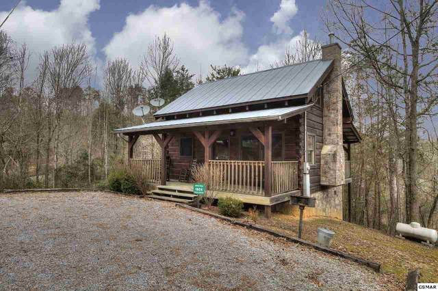 1904 Charles Lewis Way, Sevierville, TN 37876 (#226869) :: Colonial Real Estate