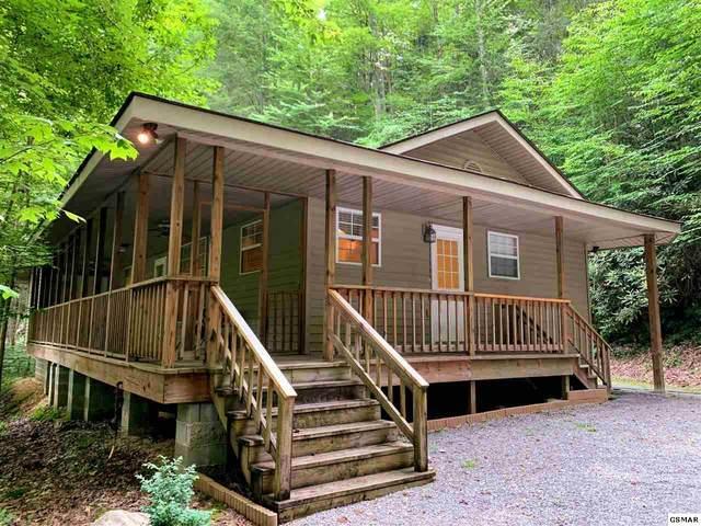 379 Norton Creek Rd, Gatlinburg, TN 37738 (#226879) :: Four Seasons Realty, Inc