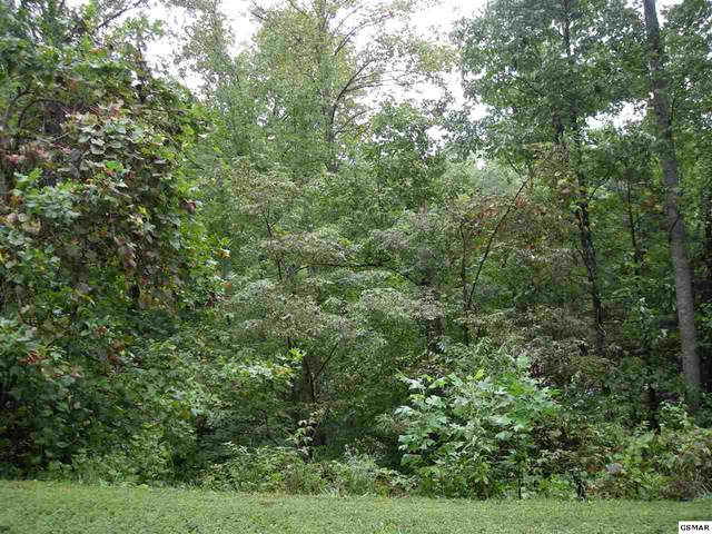 LOT 30E Harvest Moon Road, Sevierville, TN 37862 (#226892) :: The Terrell Team