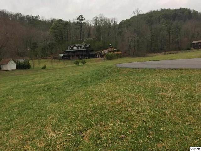 Lot 30R1 Mae Lane, Sevierville, TN 37876 (#226895) :: The Terrell Team