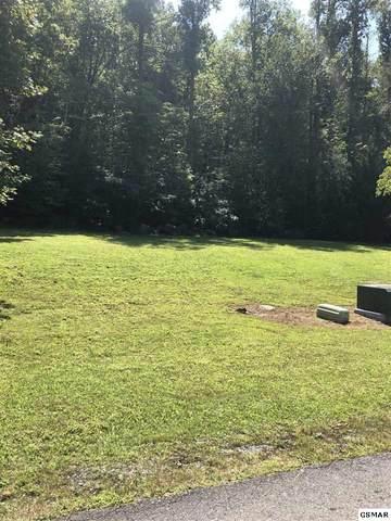 226 Forest Hills Dr, Gatlinburg, TN 37738 (#226896) :: Four Seasons Realty, Inc